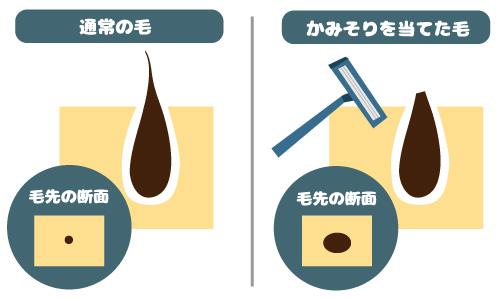 futokunaru